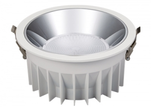 WJ04R-10W20W30W40W50W Bridgelux chip Led recessed downlight 50 degree